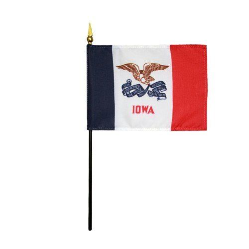 Handheld Iowa State Flags