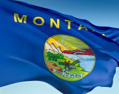 Montana State Flags