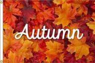 Premium Autumn Flag