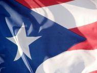Economy Printed Puerto Rico Flags