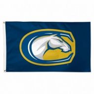 University of California at Davis Flag - 3' X 5'