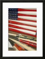 Americana Baseball Framed Print