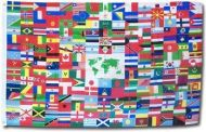 The World Flag