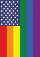 Patriotic Pride Flag/Banner