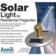 Solar Light for Small Outdoor Flagpoles