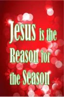 Jesus is the Reason Banner