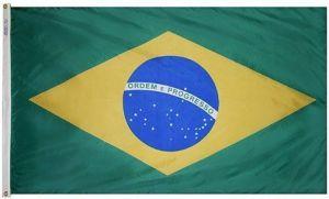 Nylon Brazil Flag - 12 in X 18 in