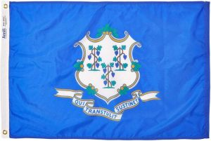 Nylon Connecticut State Flag - 12 in X 18 in
