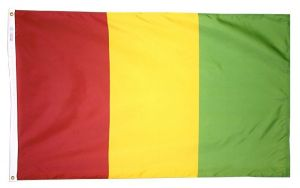 Nylon Guinea Flag - 4 ft X 6 ft