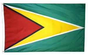 Nylon Guyana Flag - 3 ft X 5 ft