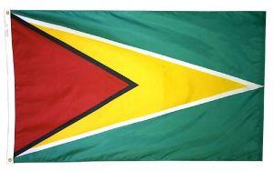 Nylon Guyana Flag - 3 ft X 5 ft
