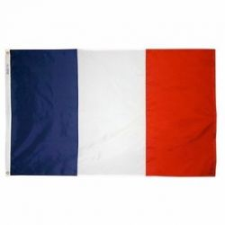 Nylon France Flag - 12 in X 18 in