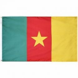 Nylon Cameroon Flag - 3 ft X 5 ft