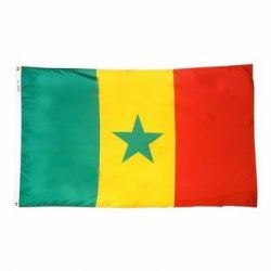 Nylon Senegal Flag - 3 ft X 5 ft