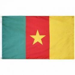 Nylon Cameroon Flag - 5 ft X 8 ft