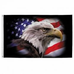 America Strong Eagle Flag