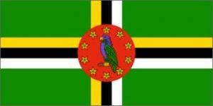 Nylon Dominica Flag - 5 ft X 8 ft