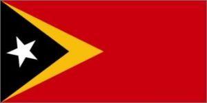 Nylon East Timor Flag - 5 ft X 8 ft