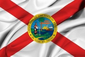 Economy Printed Florida State Flags