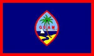 Economy Printed Guam Flags