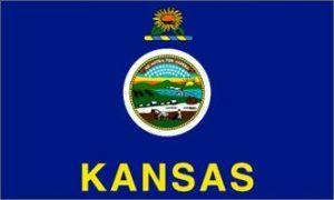 Economy Printed Kansas State Flags