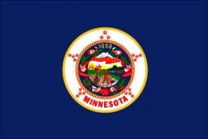 Economy Printed Minnesota State Flags