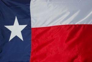 Economy Printed Texas State Flag