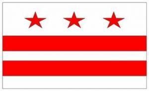 Econo-Poly Indoor/Outdoor Washington DC Flags