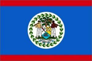 Nylon Belize Flag - 5 ft X 8 ft