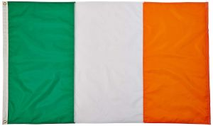 Nylon Ireland Flag - 12 in X 18 in