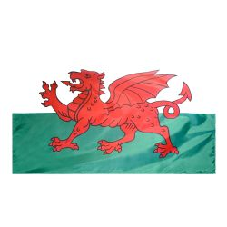 Nylon Wales Flag - 4 ft X 6 ft