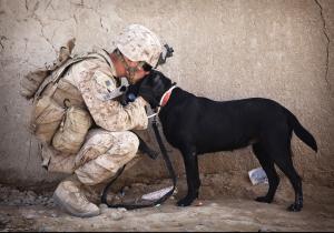 Military man embracing dog