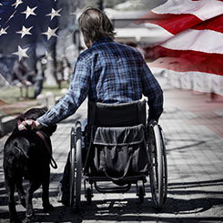american Flag and Veteran in wheelchair with dog
