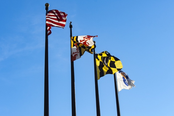 Maryland state flag with other American flags