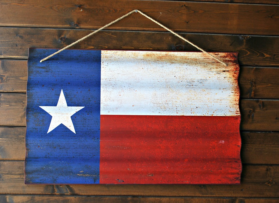 Texas state flag decor