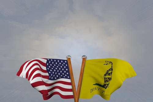 Double flags of the USA, and Gadsden flag, joined on v-shaped wooden pole