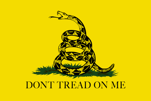 The Gadsden, Dont Tread On Me Flag, Authentic scale and color version