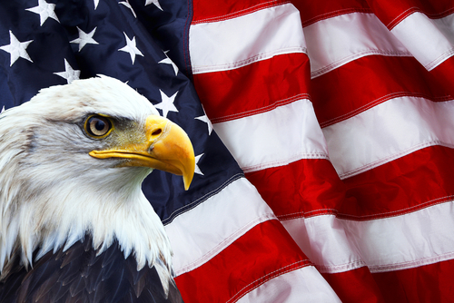 bald eagle overlay american flag